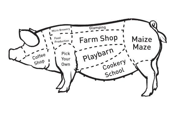 Farm Diversification - Part 2